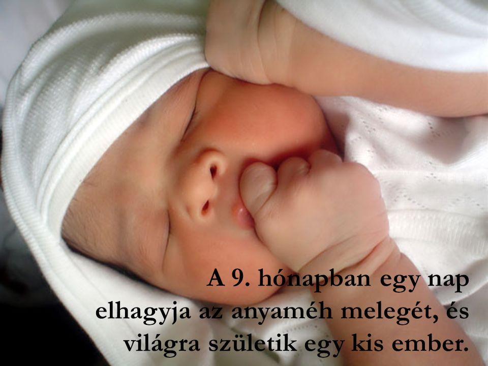 A 9. hónapban egy nap elhagyja az anyaméh melegét, és világra születik egy kis ember.