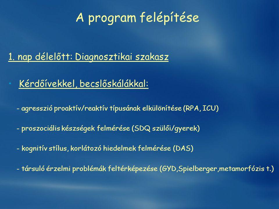 A program felépítése 1. nap délelőtt: Diagnosztikai szakasz