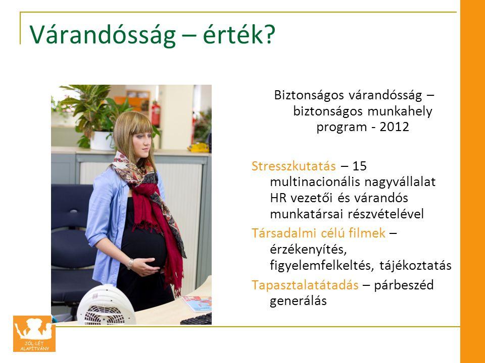 Biztonságos várandósság – biztonságos munkahely program - 2012
