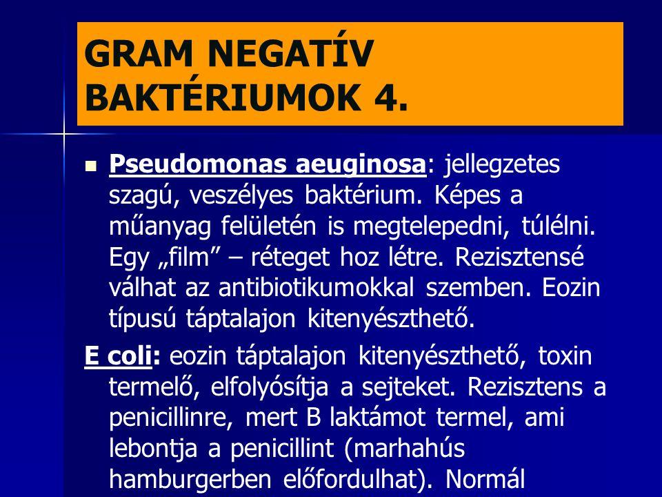 GRAM NEGATÍV BAKTÉRIUMOK 4.