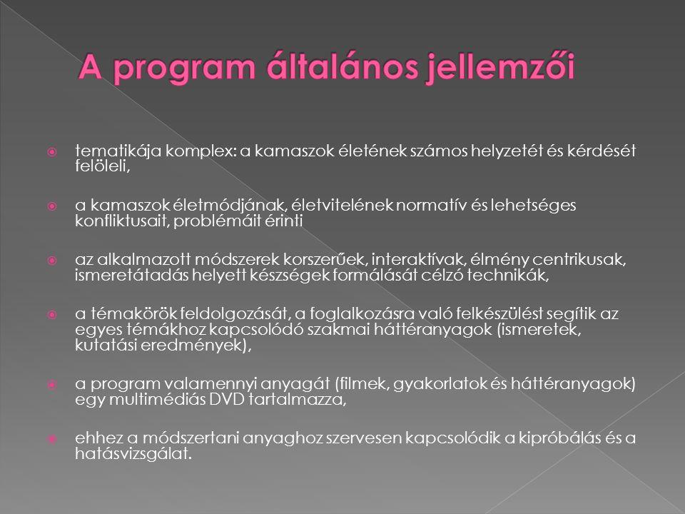 A program általános jellemzői