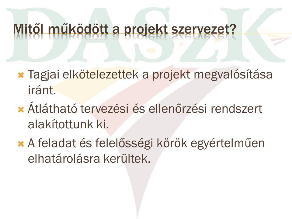 Mitől működött a projekt szervezet