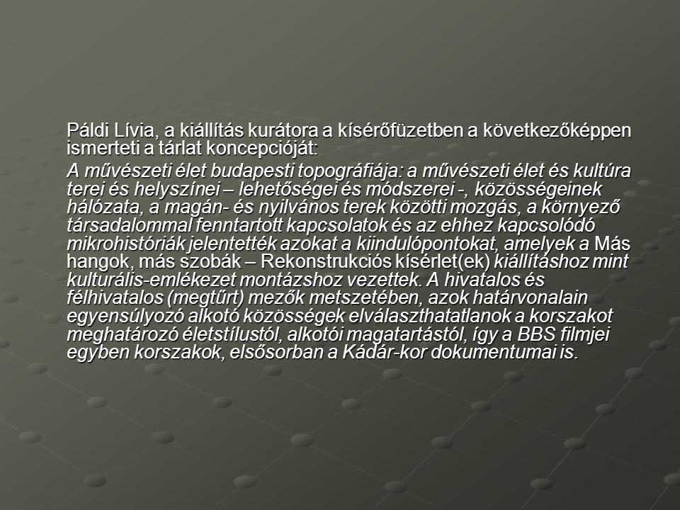 Páldi Lívia, a kiállítás kurátora a kísérőfüzetben a következőképpen ismerteti a tárlat koncepcióját: