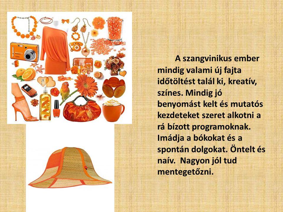 A szangvinikus ember mindig valami új fajta időtöltést talál ki, kreatív, színes.