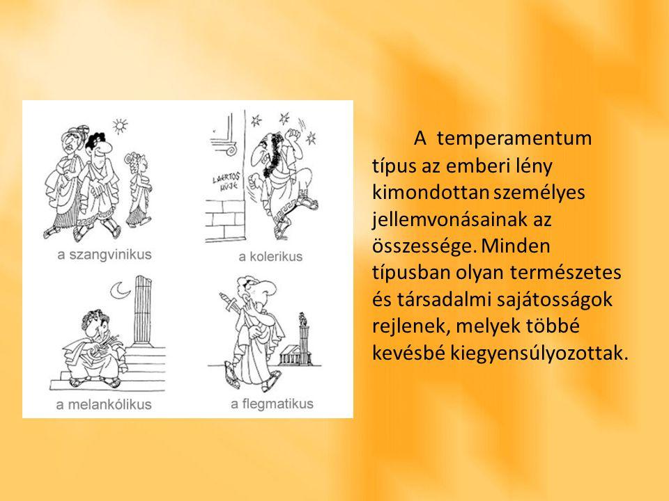 A temperamentum típus az emberi lény kimondottan személyes jellemvonásainak az összessége.