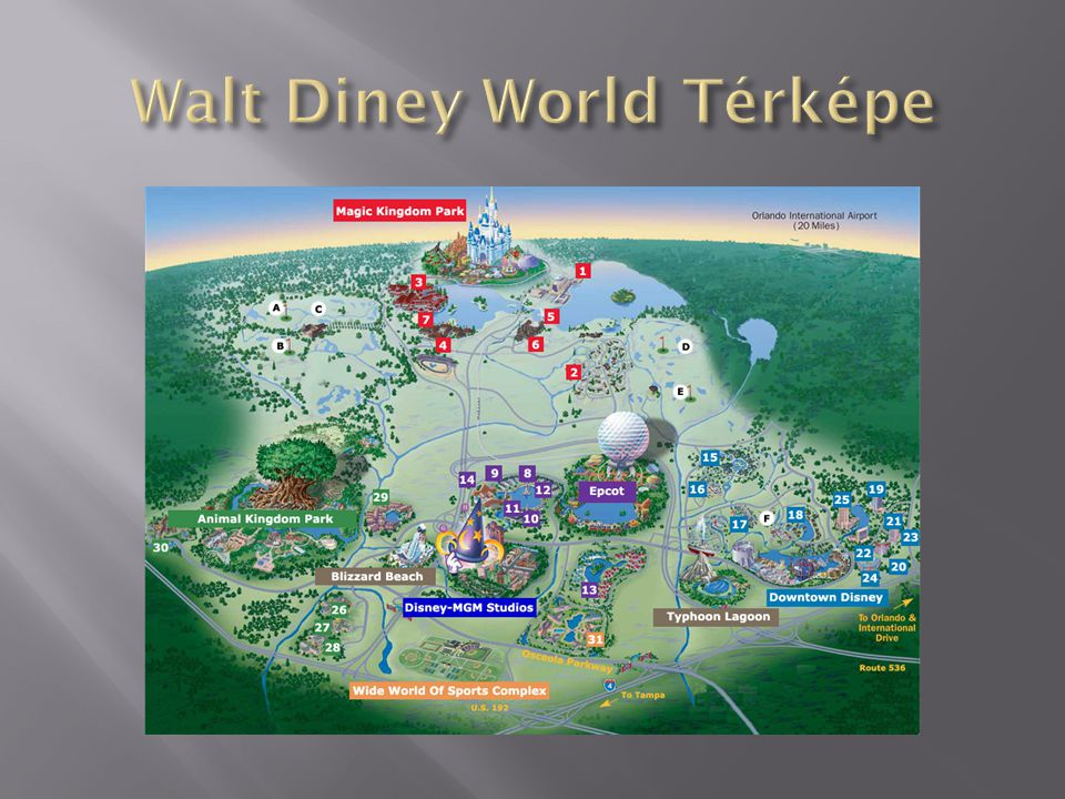 Walt Diney World Térképe