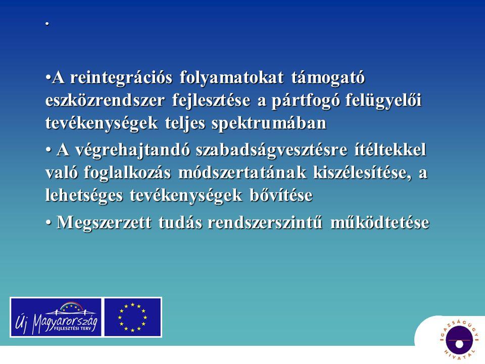 A reintegrációs folyamatokat támogató eszközrendszer fejlesztése a pártfogó felügyelői tevékenységek teljes spektrumában