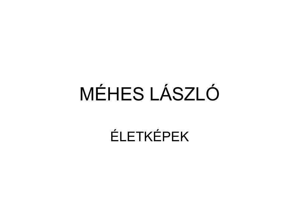 MÉHES LÁSZLÓ ÉLETKÉPEK