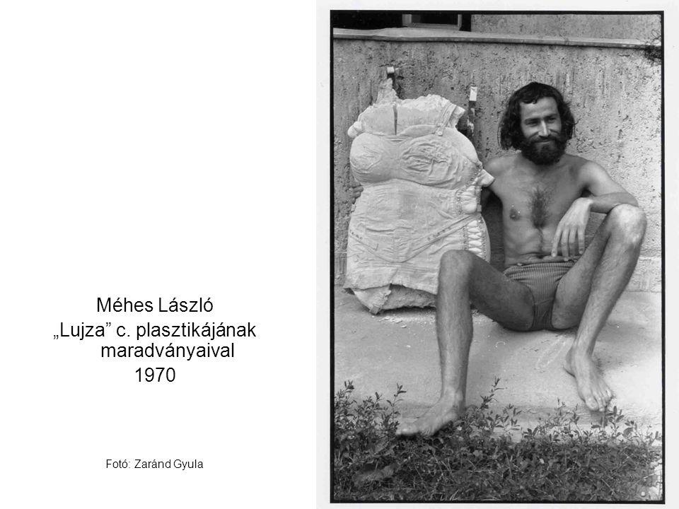 """""""Lujza c. plasztikájának maradványaival"""