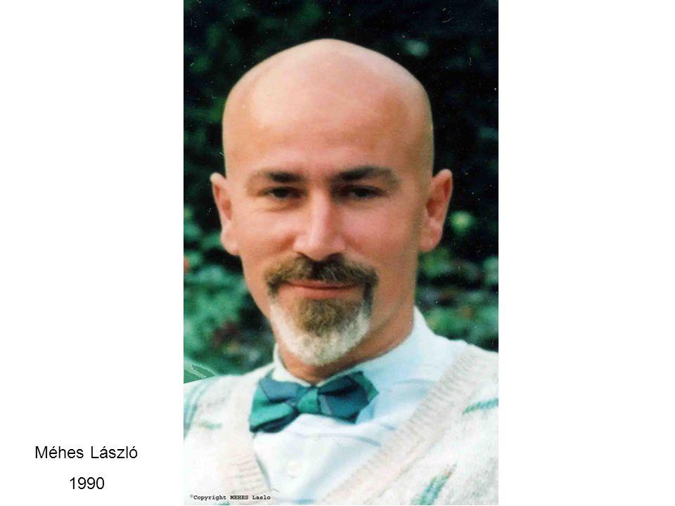 Méhes László 1990