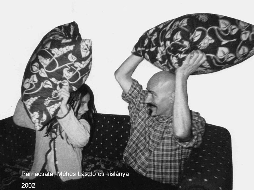 Párnacsata, Méhes László és kislánya