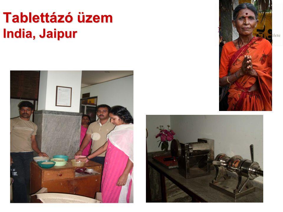 Tablettázó üzem India, Jaipur