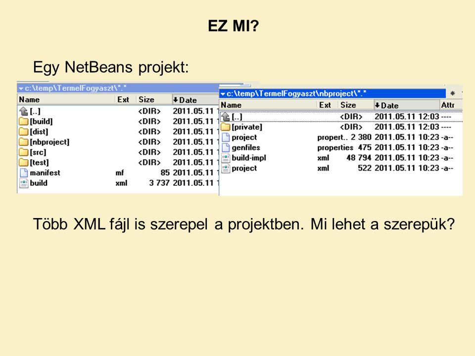 EZ MI Egy NetBeans projekt: Több XML fájl is szerepel a projektben. Mi lehet a szerepük