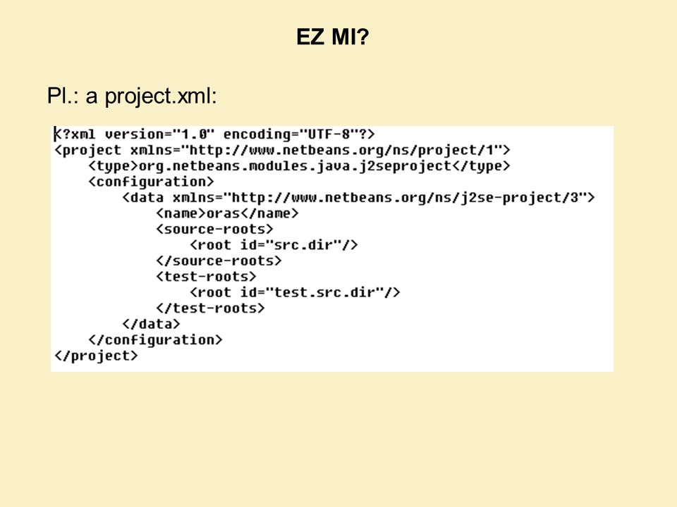 EZ MI Pl.: a project.xml: