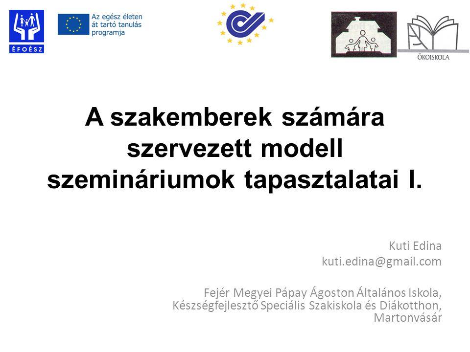 A szakemberek számára szervezett modell szemináriumok tapasztalatai I.