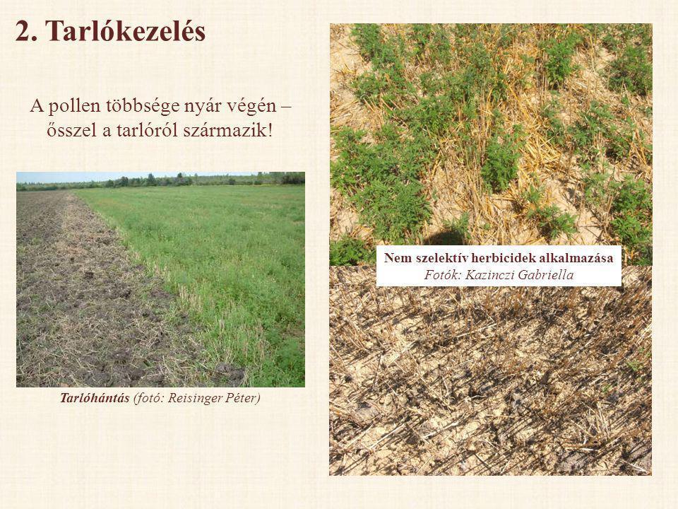 Nem szelektív herbicidek alkalmazása