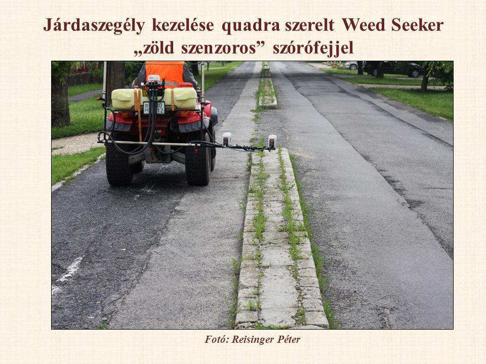 Járdaszegély kezelése quadra szerelt Weed Seeker