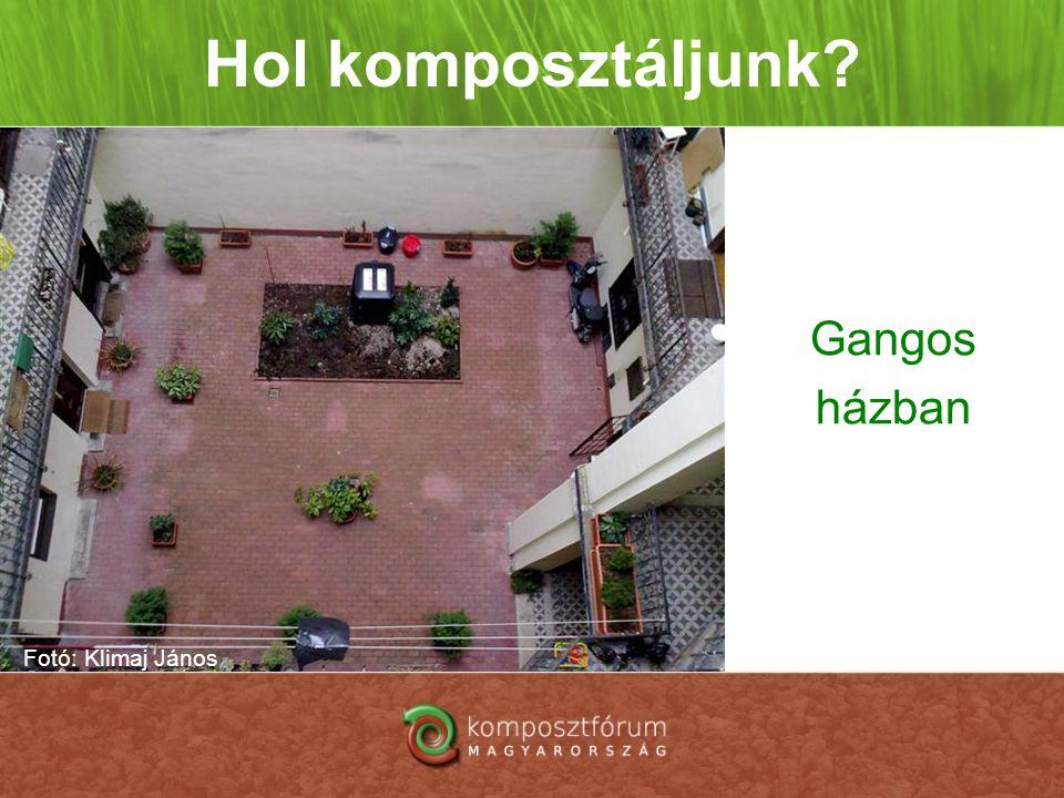 Hol komposztáljunk Gangos házban Fotó: Klimaj János