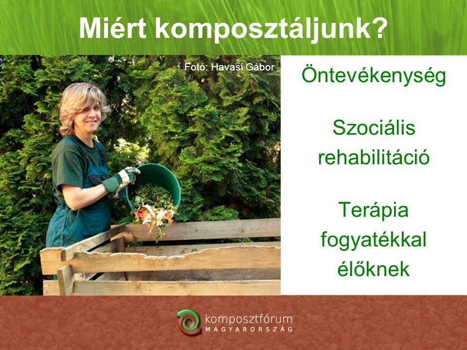 Öntevékenység Szociális rehabilitáció Terápia fogyatékkal élőknek