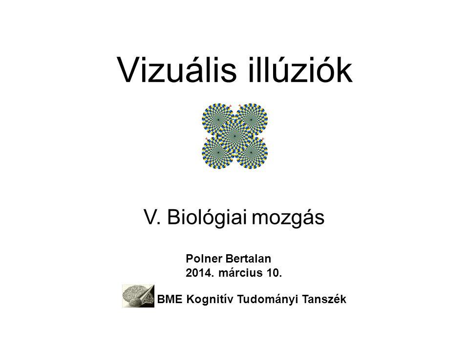 Vizuális illúziók V. Biológiai mozgás Polner Bertalan