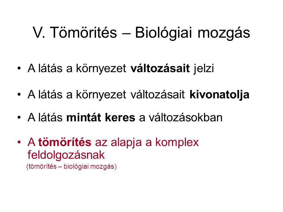 V. Tömörités – Biológiai mozgás