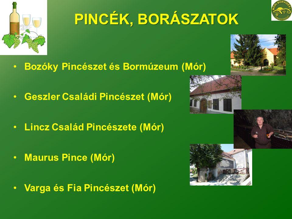 PINCÉK, BORÁSZATOK Bozóky Pincészet és Bormúzeum (Mór)