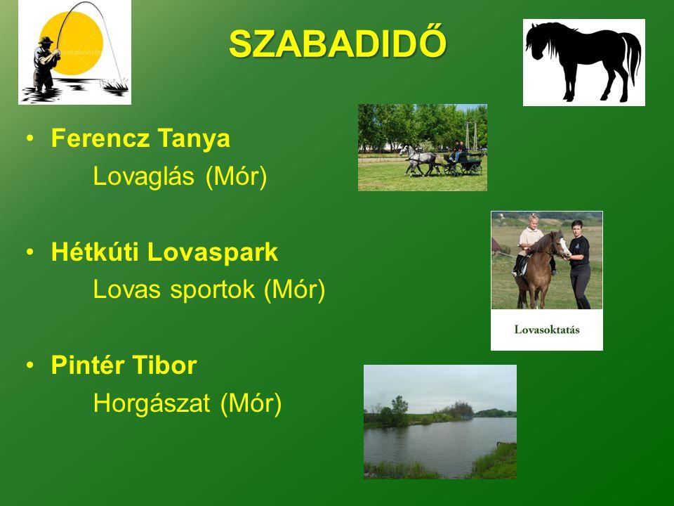 SZABADIDŐ Ferencz Tanya Lovaglás (Mór) Hétkúti Lovaspark