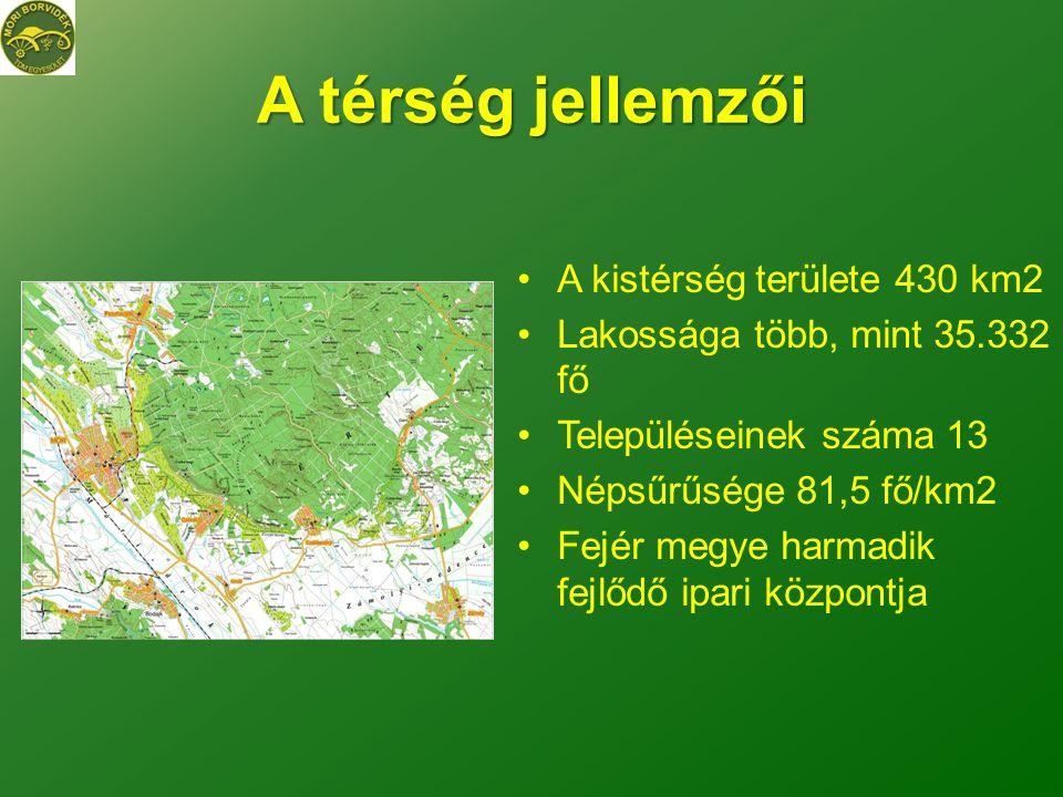 A térség jellemzői A kistérség területe 430 km2