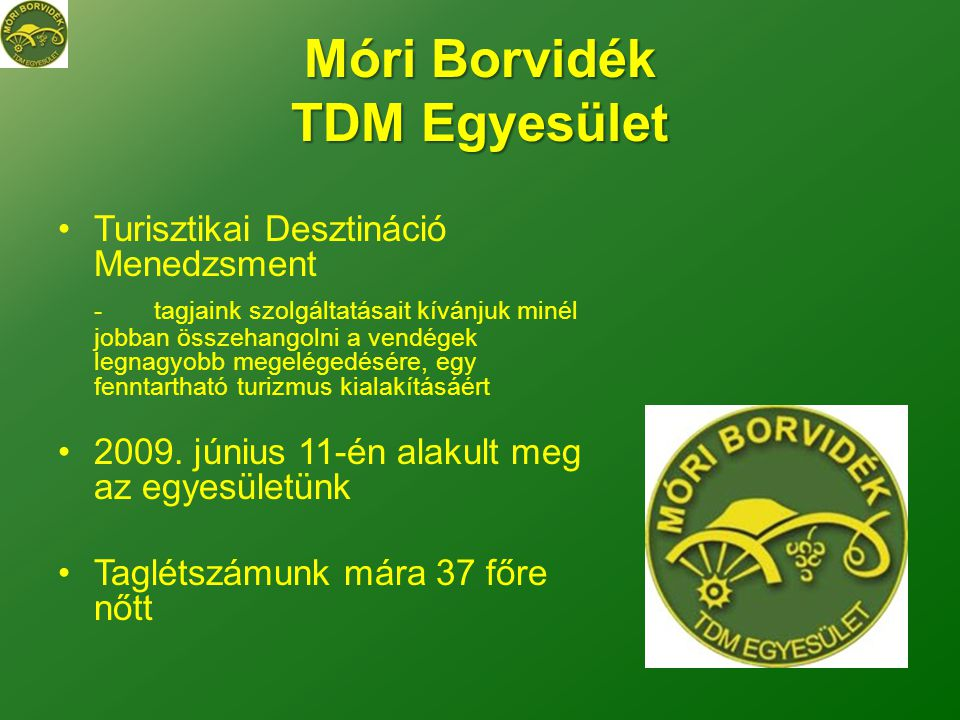 Móri Borvidék TDM Egyesület