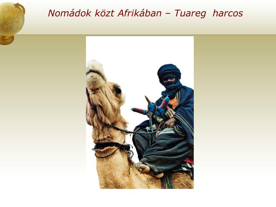 Nomádok közt Afrikában – Tuareg harcos