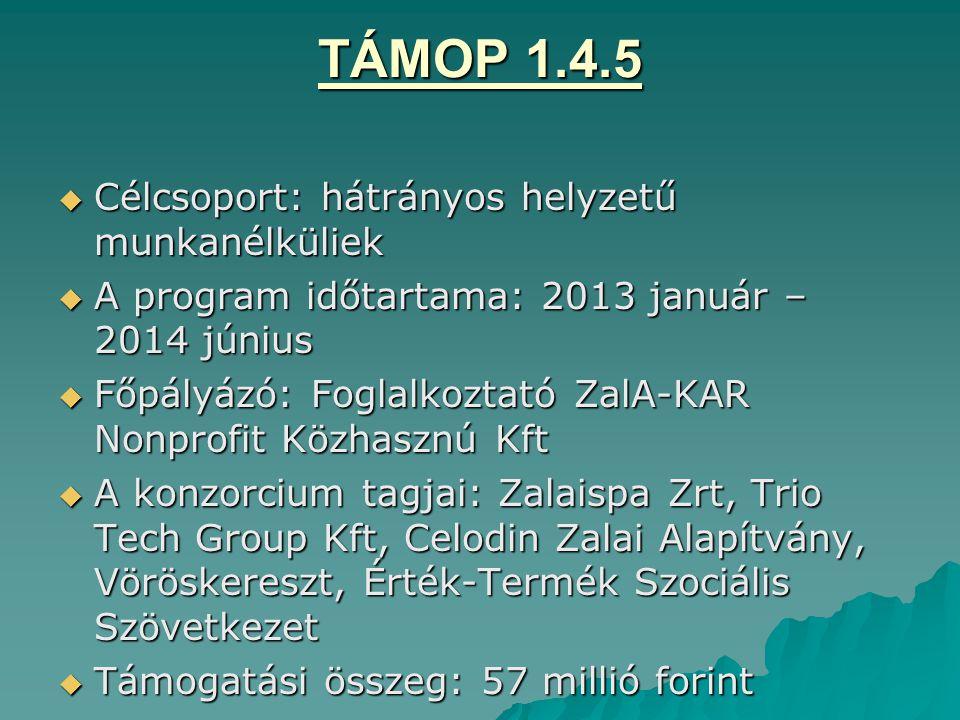 TÁMOP 1.4.5 Célcsoport: hátrányos helyzetű munkanélküliek