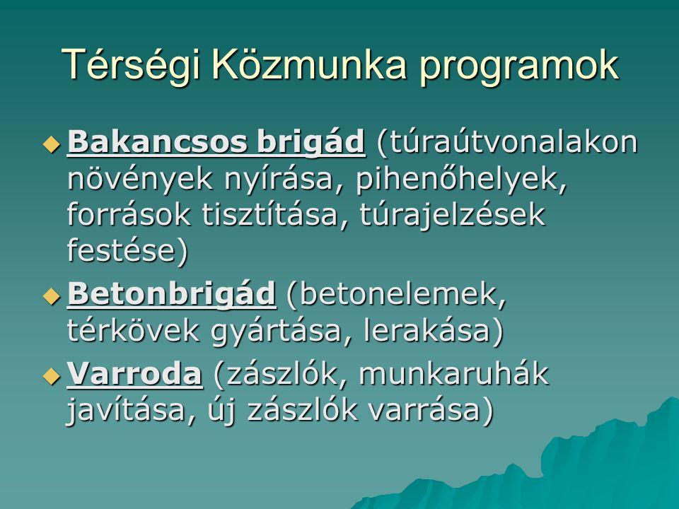 Térségi Közmunka programok