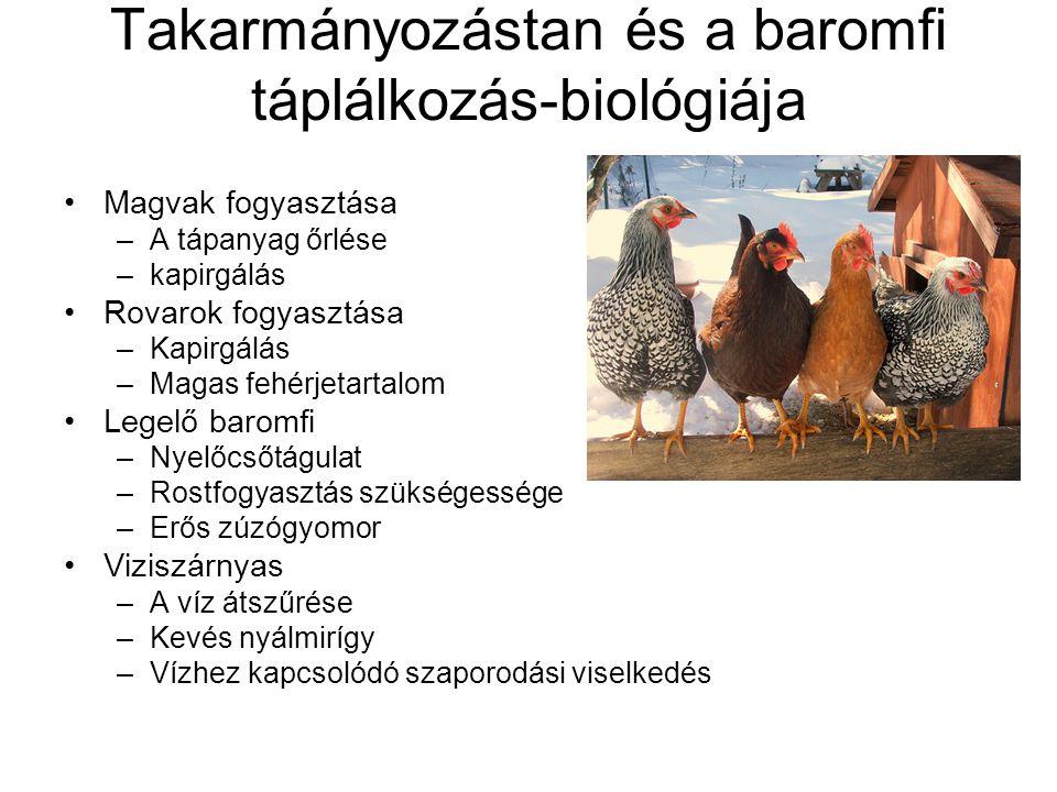 Takarmányozástan és a baromfi táplálkozás-biológiája