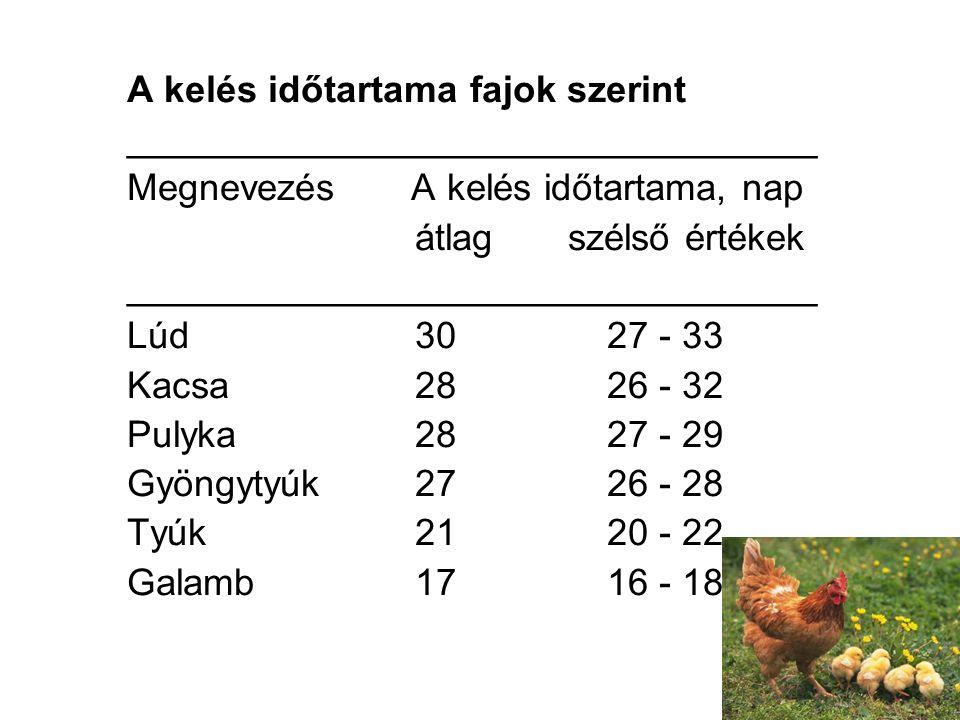 A kelés időtartama fajok szerint