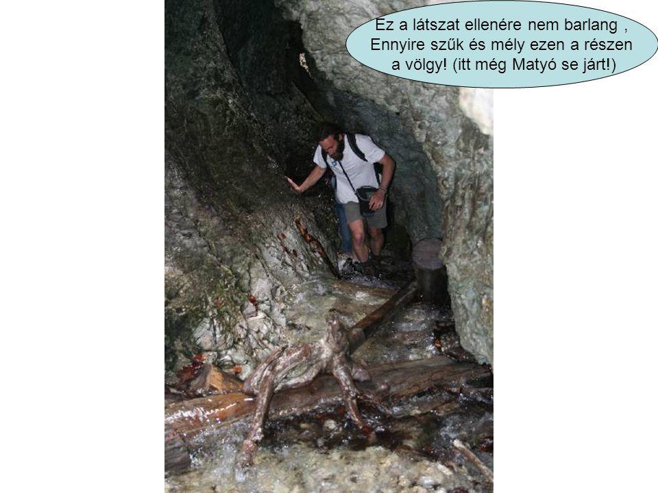 Ez a látszat ellenére nem barlang , Ennyire szűk és mély ezen a részen