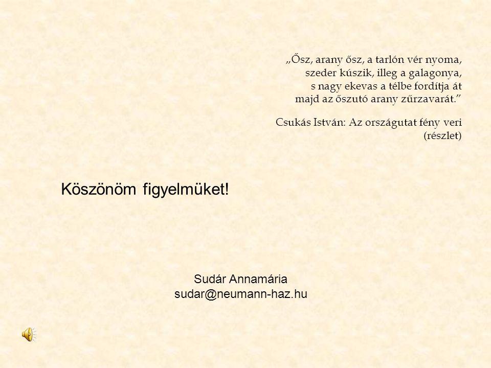 Köszönöm figyelmüket! Sudár Annamária sudar@neumann-haz.hu