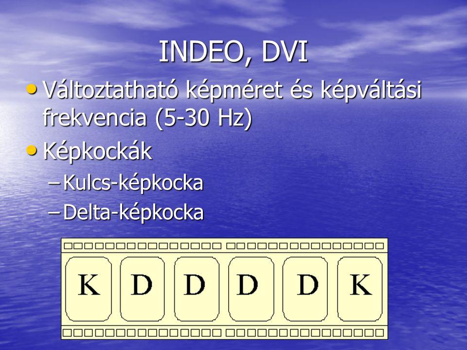 INDEO, DVI Változtatható képméret és képváltási frekvencia (5-30 Hz)