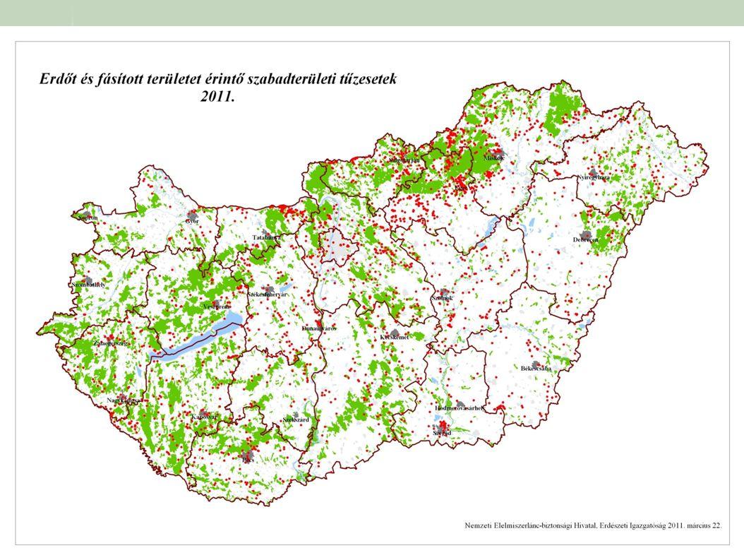 A bemutatott térképen az idei évben erdőt és fás területet érintő tűzesetek kerültek megjelölésre.