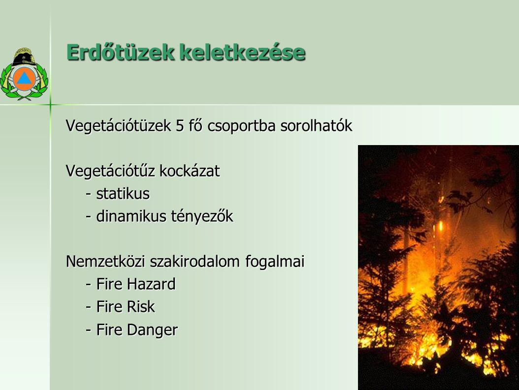 Erdőtüzek keletkezése