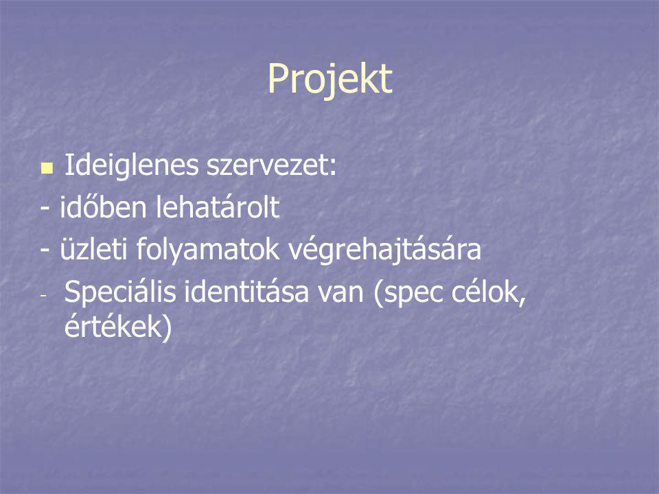 Projekt Ideiglenes szervezet: - időben lehatárolt