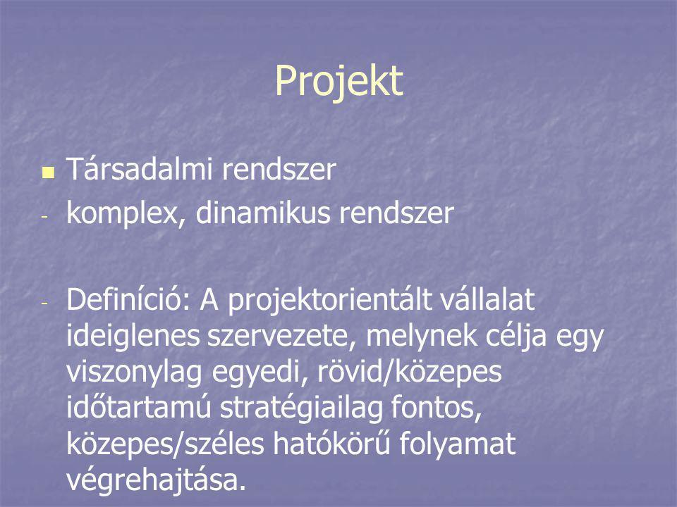 Projekt Társadalmi rendszer komplex, dinamikus rendszer