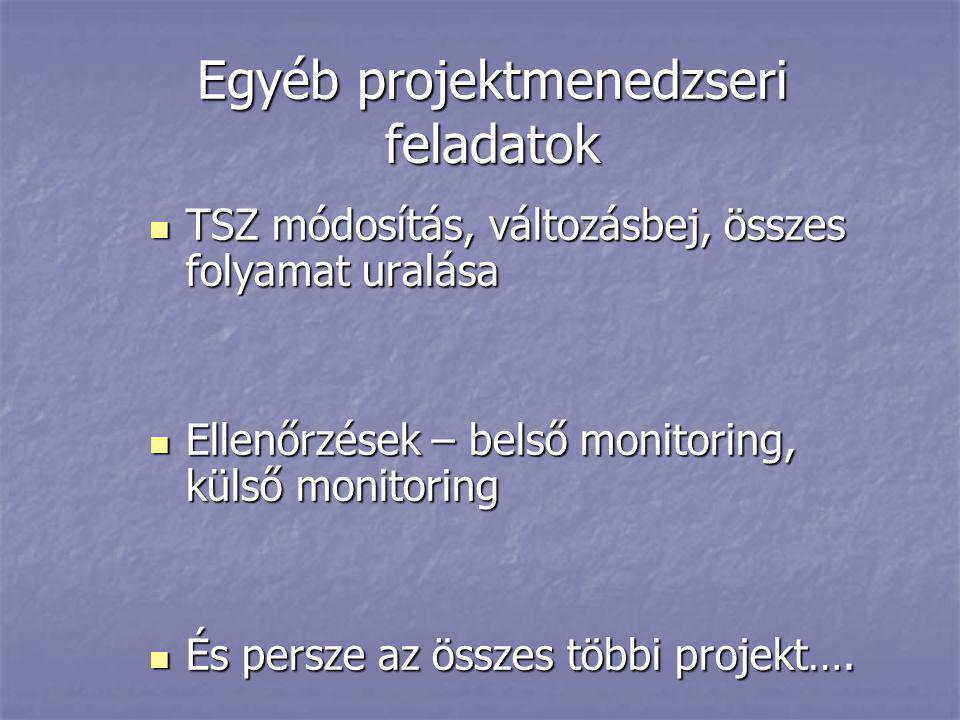 Egyéb projektmenedzseri feladatok