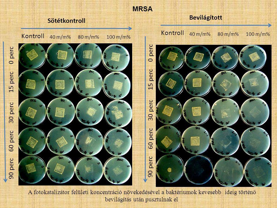 MRSA Bevilágított Sötétkontroll Kontroll Kontroll 0 perc 0 perc