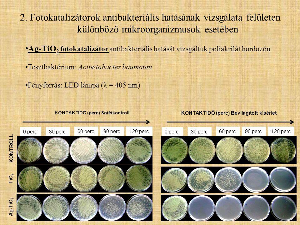 2. Fotokatalizátorok antibakteriális hatásának vizsgálata felületen különböző mikroorganizmusok esetében