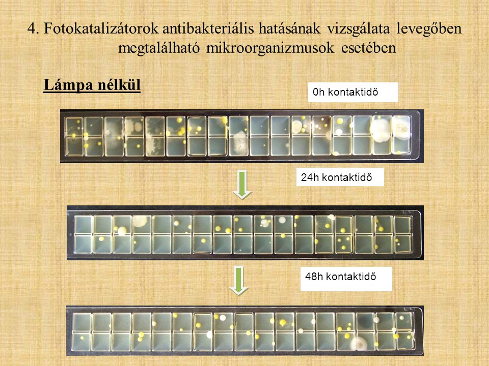 4. Fotokatalizátorok antibakteriális hatásának vizsgálata levegőben megtalálható mikroorganizmusok esetében