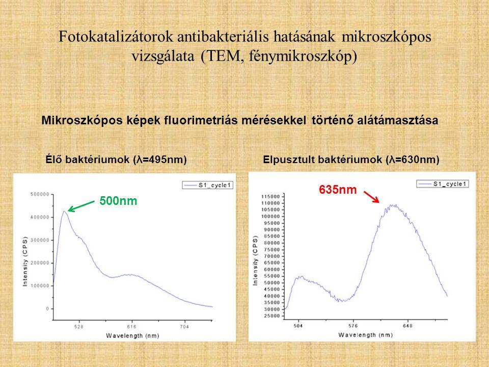 Fotokatalizátorok antibakteriális hatásának mikroszkópos vizsgálata (TEM, fénymikroszkóp)
