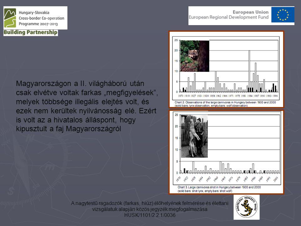 """Magyarországon a II. világháború után csak elvétve voltak farkas """"megfigyelések , melyek többsége illegális elejtés volt, és ezek nem kerültek nyilvánosság elé. Ezért is volt az a hivatalos álláspont, hogy kipusztult a faj Magyarországról"""