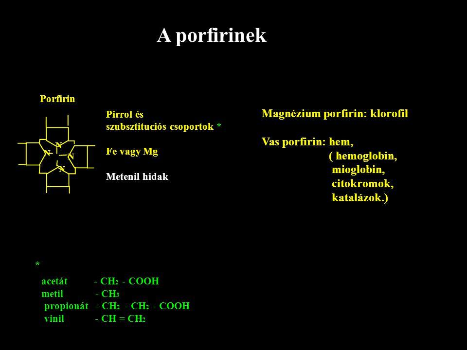 A porfirinek Magnézium porfirin: klorofil Vas porfirin: hem,