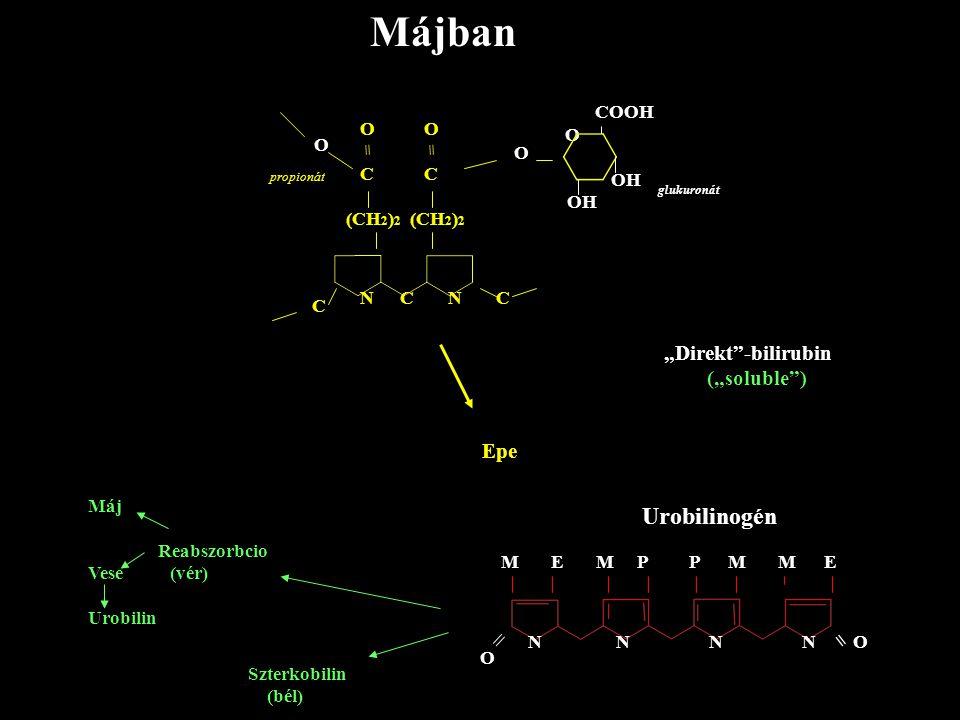 "Májban Urobilinogén = ""Direkt -bilirubin (""soluble ) Epe = COOH O C"