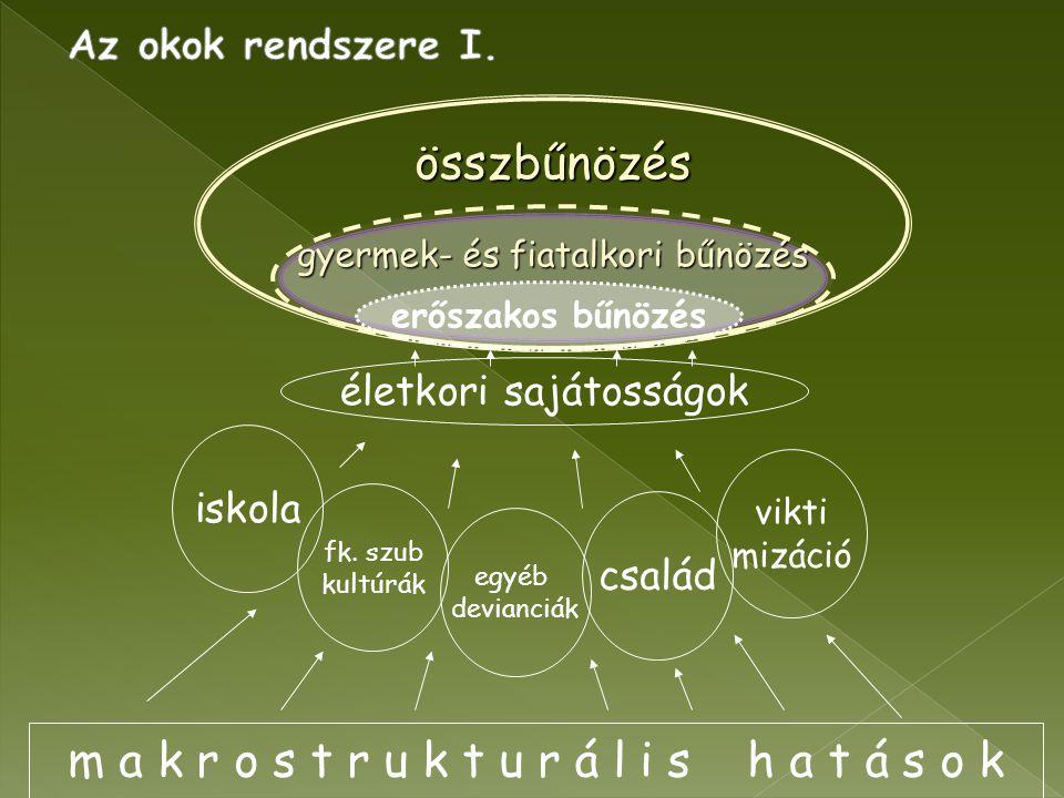 m a k r o s t r u k t u r á l i s h a t á s o k